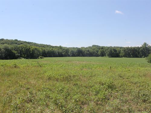 Livingston County 25 Acres, Old : Trenton : Livingston County : Missouri