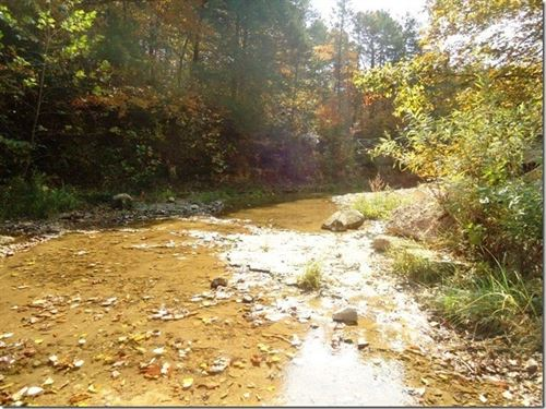 800 Acre Ranch Ponds & Springs : Mansfield : Laclede County : Missouri
