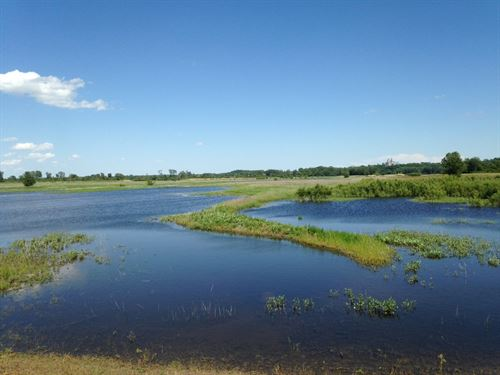Land, Wetland / Hunting Riverfront : Miami : Saline County : Missouri