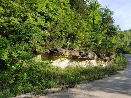 24 Acres Warren County, Missouri : New Florence : Warren County : Missouri