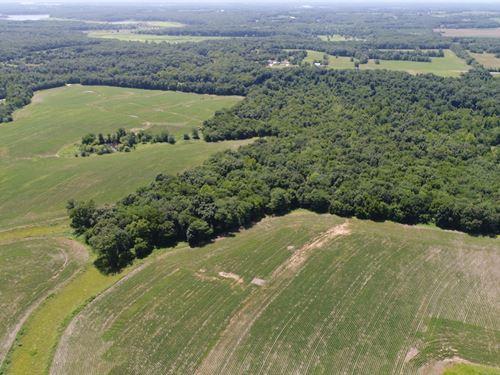 Hunting Farm Near Mark Twain : Paris : Monroe County : Missouri