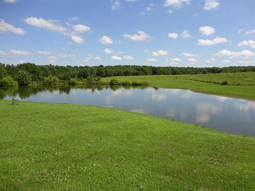 Lovely 73 Acre Farm Salem : Salem : Dent County : Missouri