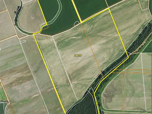 Tillable River Bottom Land Callaway : Steedman : Callaway County : Missouri