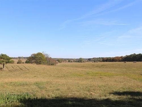 178 Acre Farm Texas Co, Missouri : Summersville : Texas County : Missouri