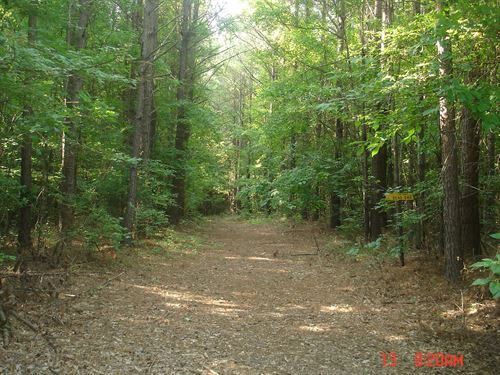 226 Acres in Choctaw County, MS : Ackerman : Choctaw County : Mississippi