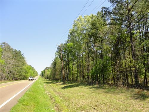 Land 18 Acres Scott County Forest : Forest : Scott County : Mississippi