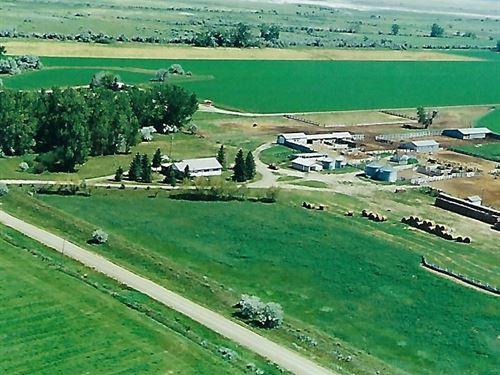 Irrigated Farm Land Near Malta, MT : Malta : Phillips County : Montana