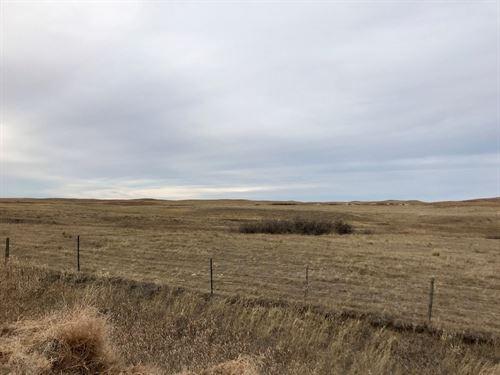 640 Acres Pastureland Richland : Savage : Richland County : Montana