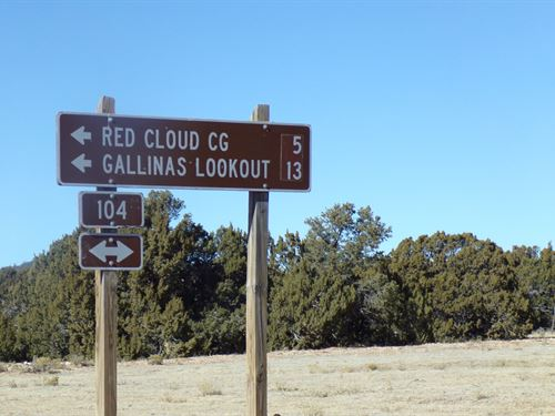 Central NM 160 Acres Cibola : Corona : Lincoln County : New Mexico