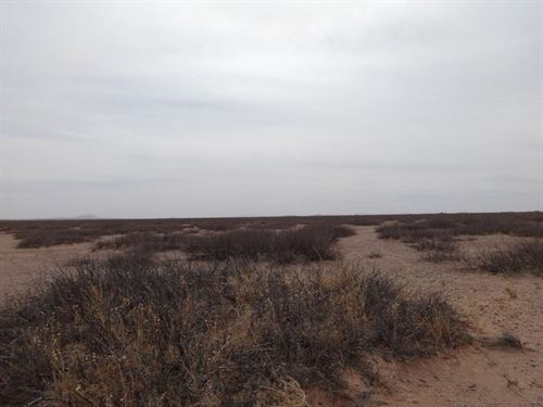 80 Acres Southeast Desert Luna : Deming : Luna County : New Mexico