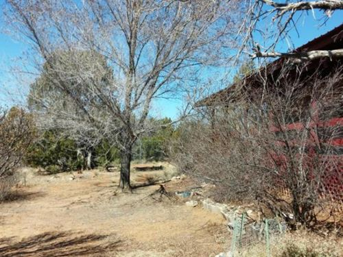 NM Country Home Acreage National : Estancia : Torrance County : New Mexico