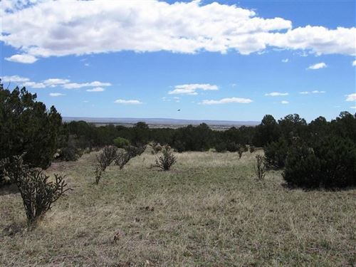 157.13 Acre Horse Ranch Land : Moriarty : Torrance County : New Mexico