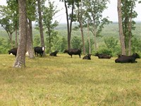 Ranch/Farm With Amazing Views : Pikeville : Bledsoe County : Tennessee