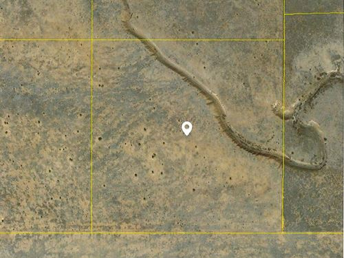 NM 40 Acres Torrance County Remote : Tajique : Torrance County : New Mexico