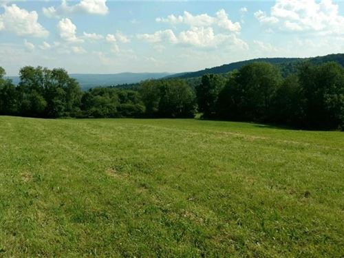 61+ Acres Scenic Land Offering : Bainbridge : Chenango County : New York