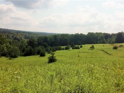 83 Acres Secluded Land Cortland : Cincinnatus : Cortland County : New York
