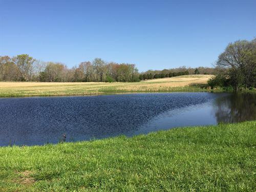 Farm For Sale In Tennessee : Bon Aqua : Hickman County : Tennessee