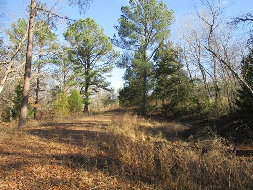 West Tennessee Land For Sale : Finger : McNairy County : Tennessee