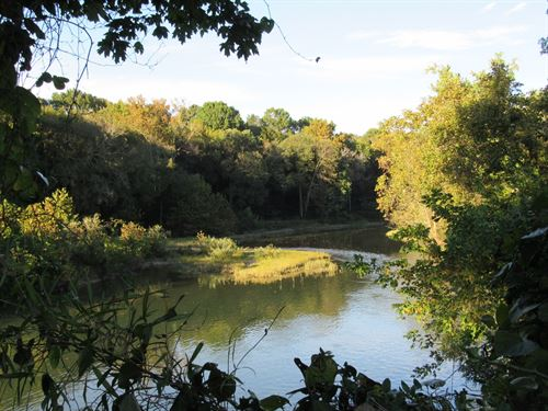 20 Acres Unrestricted Buffalo River : Linden : Perry County : Tennessee
