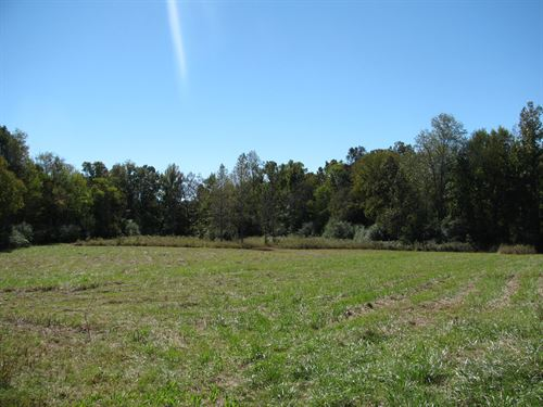 Fenced Pasture Land Morris Chapel : Morris Chapel : Hardin County : Tennessee