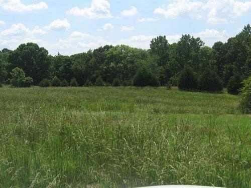 Beautiful Mini Farm, Recreational : Sardis : Henderson County : Tennessee