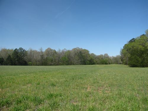 Waterfront Acreage Land Tennessee : Savannah : Hardin County : Tennessee