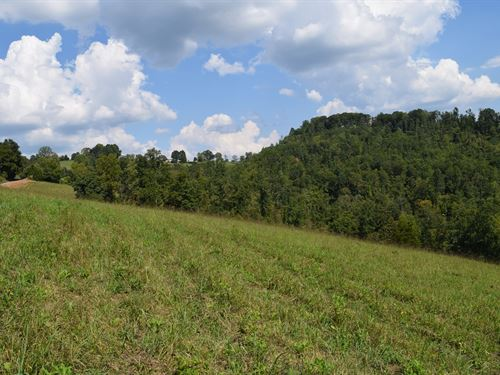 East TN Land Claiborne County : Tazewell : Claiborne County : Tennessee
