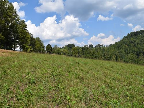 Vacant Land East Tennessee : Tazewell : Claiborne County : Tennessee