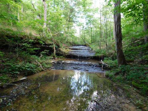Tn Land Waterfall, Creek, Timber : Waynesboro : Wayne County : Tennessee