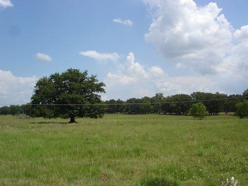 Recreational Country Home Equine : Blossom : Lamar County : Texas