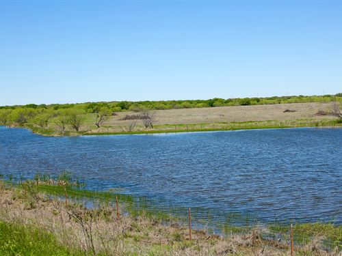 Hunting / Cattle Ranch Brownwood : Brownwood : Brown County : Texas