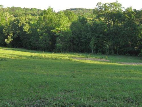 East Tx Pineywoods Rural Acreage : Frankston : Anderson County : Texas