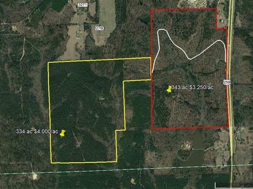 334 Acres Plantation Pine Hardwood : Mount Enterprise : Rusk County : Texas