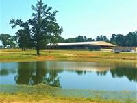 Cutting Horse Roping Horse Facility : Mount Vernon : Franklin County : Texas