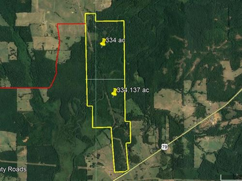 668 Acres Hunting Recreation : New Summerfield : Cherokee County : Texas