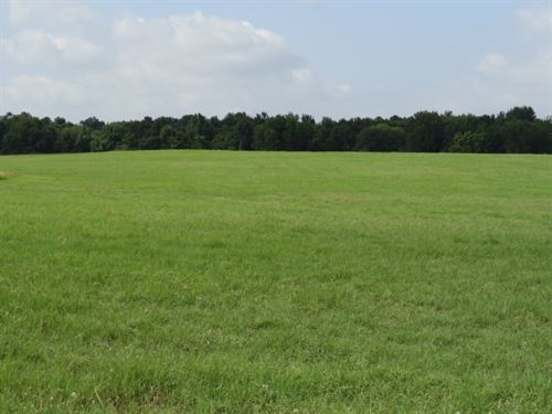 Houston County Land For Sale : Pennington : Houston County : Texas