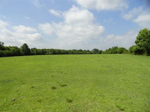 Houston County Land, Creek, Pond : Pennington : Houston County : Texas