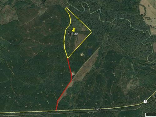 197 Acres Hunting Recreation East : Ratcliff : Houston County : Texas