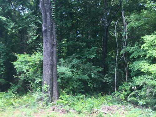 Recreational Land, Cherokee Co, TX : Rusk : Cherokee County : Texas