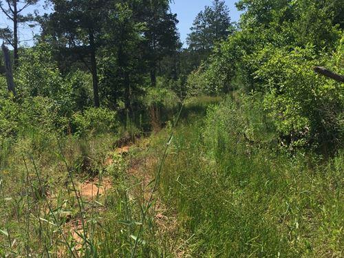 East Texas Land, Hunting : Rusk : Cherokee County : Texas