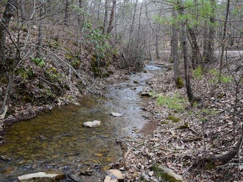 225 Acres Wooded Timberland : Blacksburg : Montgomery County : Virginia