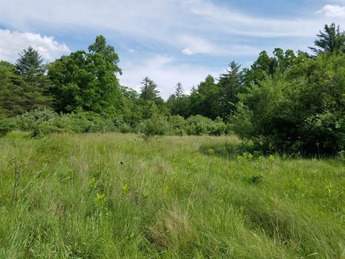 Large Tract of Land in Bland, VA : Bland : Virginia