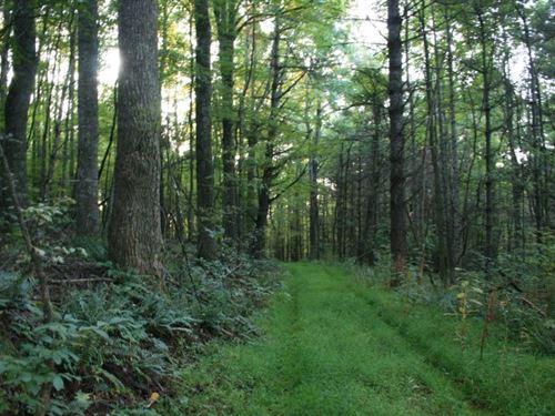 203.8 Acres Land Located Carroll : Dugspur : Carroll County : Virginia