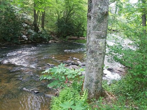 Outdoorsman Recreation Property : Dugspur : Carroll County : Virginia