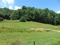 Land Elk Creek, Grayson County : Elk Creek : Grayson County : Virginia