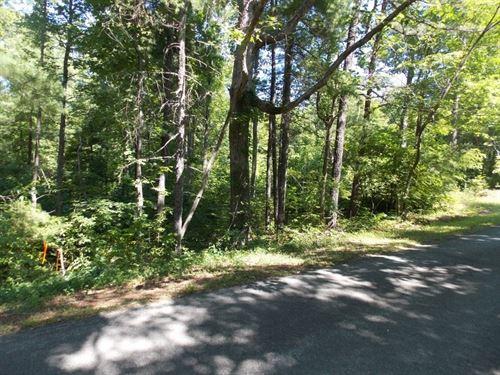 Wooded Land Building Site Ferrum : Ferrum : Franklin County : Virginia