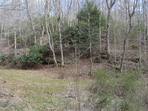 25 Acre Nature Retreat Mountains : Floyd : Virginia