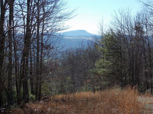 Land, Mountain Views, Building Site : Floyd : Virginia