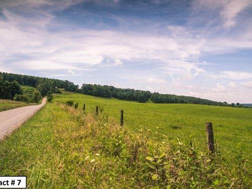 Farm Land, Recreational Hunting : Floyd : Virginia