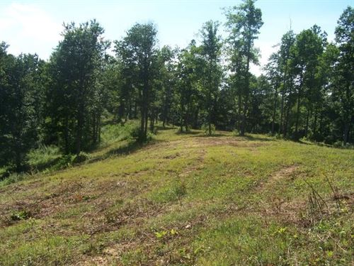 12.92 Acres Land Patrick County : Meadows Of Dan : Patrick County : Virginia